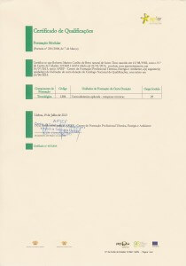 Formação em Termodinâmica Aplicada – Máquinas Térmicas